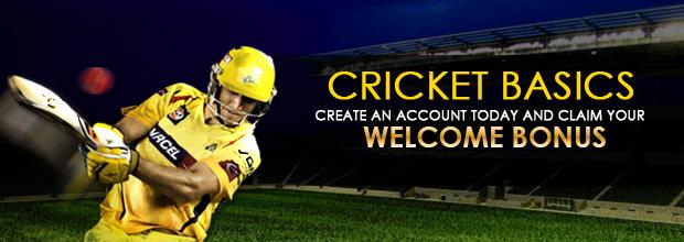 Cricket Basics