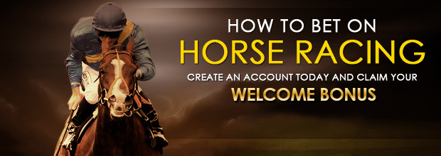 horse-how to