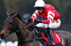 Gold Cup the target for stalled Coneygree