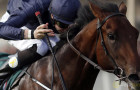 Horse Racing: Air Force team to consider second Guineas attempt