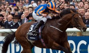 Aidan-O-Brien-Churchill-Epsom-Horse-Racing