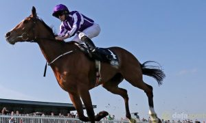 Minding-Tattersalls-Gold-Cup-Horse-Racing