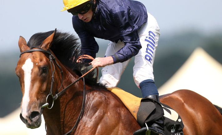 Hillstar on King George and Queen Elizabeth Stakes Ascot