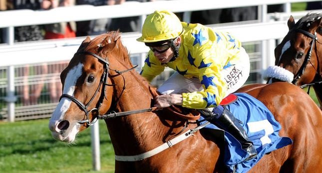 secret pearl horse David Barron