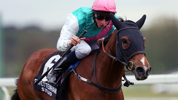 Breeders Cup Filly and Mare Turf is target for Winsili
