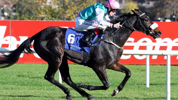 Free EagleLeopardstown to Epsom Derby market horse racing