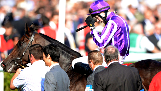 Juddmonte International Stakes and Red Mills Irish Champion Stakes Camelot