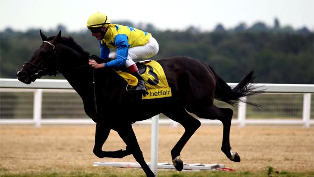 Novellist horse racing