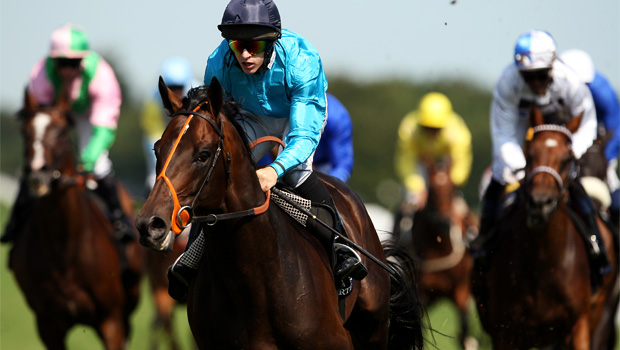 Brown Panther heading to Melbourne Cup
