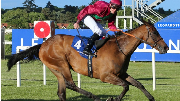 Fiesolana Horse racing
