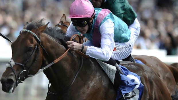 John Gosden-trained Excess Knowledge