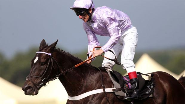 Forgotten-Voice-horse-racing-2