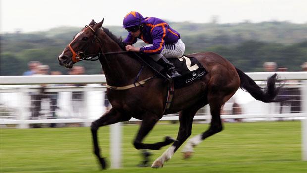 Horse-Racing-Simenon