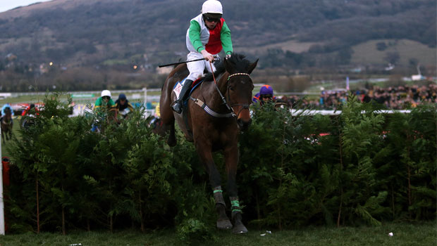Big Shu on Cheltenham and Punchestown Festivals