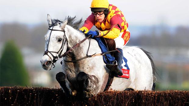 Dynaste horse Haydock betfair chase