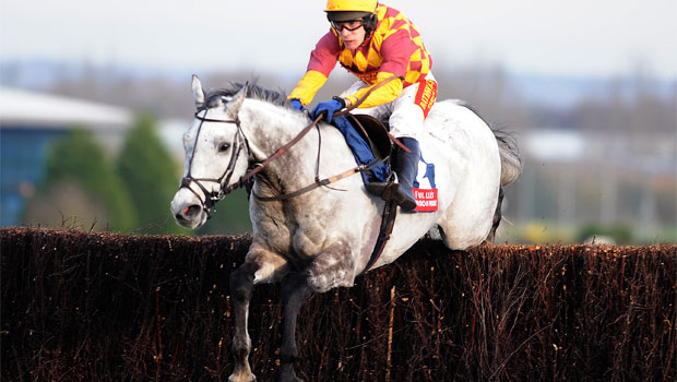 Dynaste horse Gold Cup
