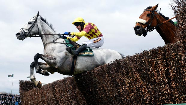 Dynaste ridden by Tom Scudamore