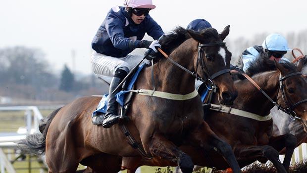 West Wizard Horse racing