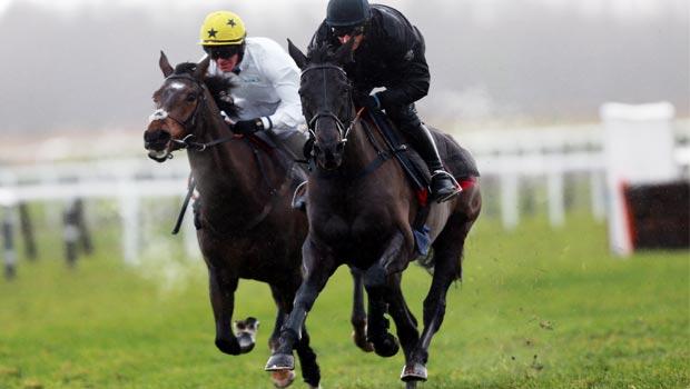 Big Buck Horse Racing