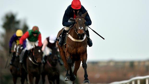 Bobs Worth Horse Racing