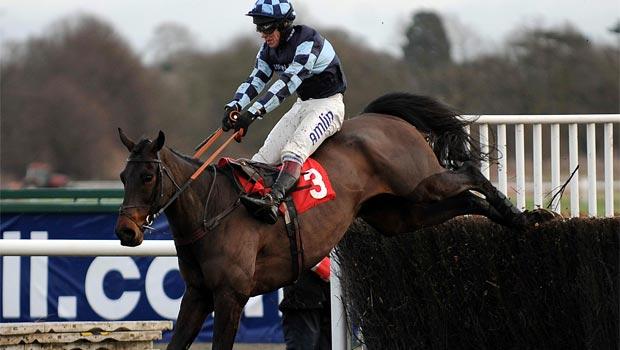 Menorah horse racing