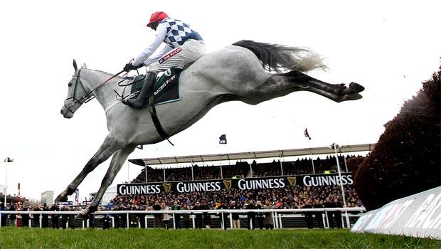 Simonsig horse racing