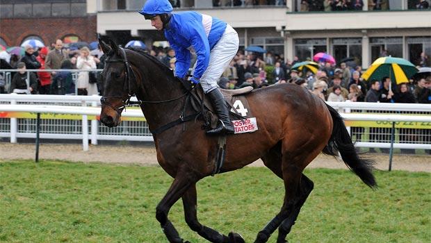 Cappa Bleu Horse Racing