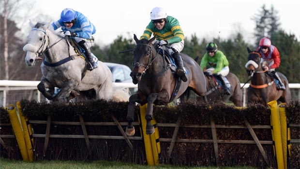 Seeyouatmidnight horse Premier Kelso Hurdle