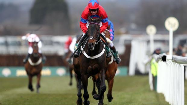 Sprinter Sacre horse Cheltenham Festival