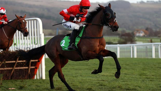 Zarkandar Horse