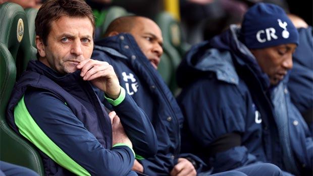 Tim Sherwood Tottenham manager