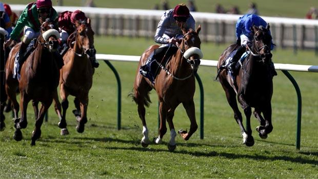 Sandiva Horse Racing