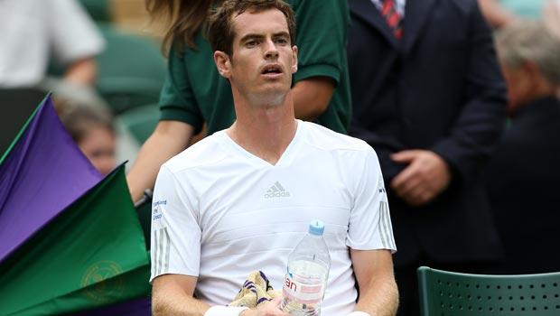 Andy Murray 2014 Wimbledon Championships