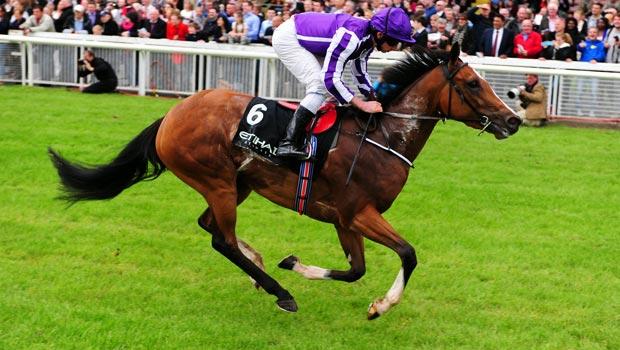 Marvellous Horse Racing