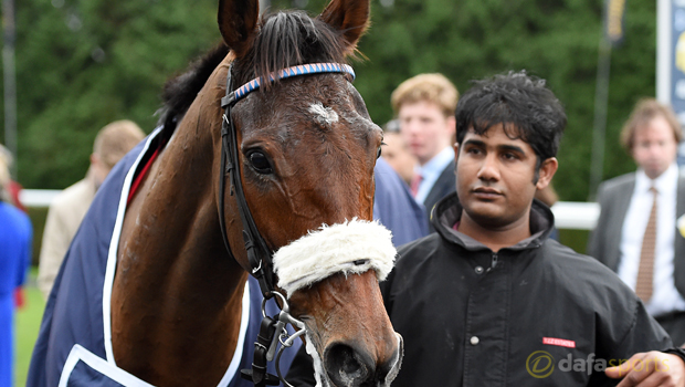 Cue Card Horse Racing Gold Cup
