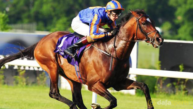 St-George-Gold-Cup-at-Royal