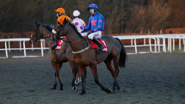 Horse racing Tizzard mulling Ryanair option for Cue Card