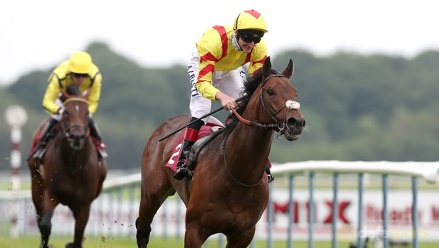 Harry-Angel-Horse-Racing