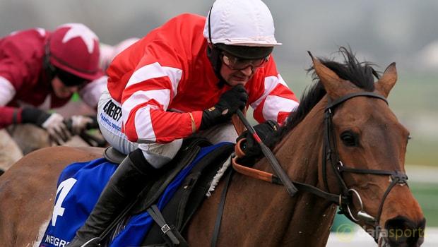Coneygree-Horse-Racing-Kerry-National