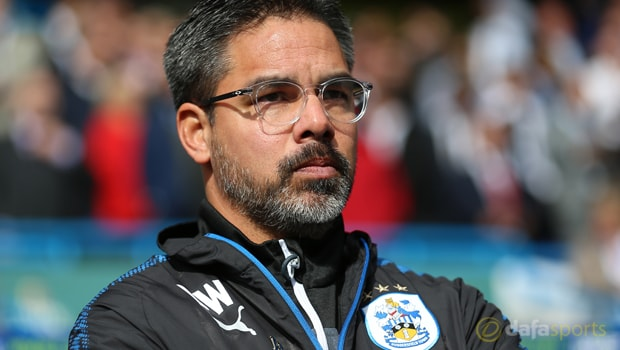 Huddersfield-Town-manager-David-Wagner